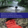Arkansas in the Balance shale report