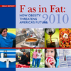 2010 F as in Fat report
