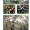 Mount Kessler Reserve