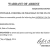 Arrest warrant for Andrea Davis - use of a communication device