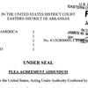Plea agreement addendum in Maggio case