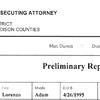 Green Preliminary Report