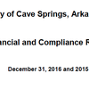 Cave Springs Audit
