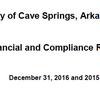 Cave Springs Audit