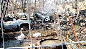 Taking a gander — geese watched as firefighters from six area fire departments extinguished the fire of a garage behind a double-wide trailer in Avoca.