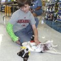 PUPPY LOVE - Zack Yeakley of the Rogers area gives a belly rub to a dog Saturday at the Rogers Petco...