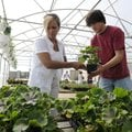 Christine Loyd picks out geraniums Wednesday with the help of Bentonville High School junior Seth Jo...