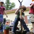 DIGGING IN THE DIRT - Baker Elementary School third-grade teacher Sharon Holladay, left, oversees st...