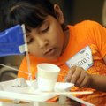 Diana Campos, a Bayyari Elementary School gifted and talented third-grader, works Friday on her grou...
