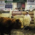 Ty Thompson, left, livestock auctioneer, recently takes bids at the Farmers Livestock Auction in Sp...