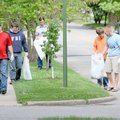Volunteers from Crossculture Church pick up litter Saturday on West Central Avenue in Bentonville. ...