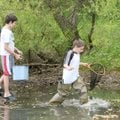 Billy Horton, 12, from left, Dusty Newell, 11, and Evan Volstad, 11, ford a muddy pond Sunday in sea...