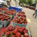 Brianna Cremer of Fayetteville prepares Tuesday to purchase some strawberries from Phillip Miner of ...