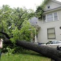 A TREE FALLS IN BENTONVILLE - Alicia Welch, right, takes a photo Friday of her neighbor David Mathis...