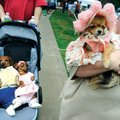 PRIMPED POOCH = Tiffany Farris, right, carries Kelsi, a 4-year-old longhaired Chihuahua, after arriv...