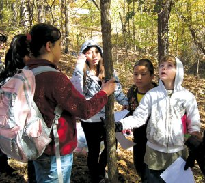 Decatur Northside Elementary fifth grade students Payton Sargent, Kimberly Mendoza, Christian Cacerus, Ryan Shaffer examined a small oak tree while conducting a series of field experiments at Crystal Lake.