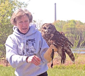 Lynn Sciumbato of Morning Star Rehabilitation Center, Gravette, showed a barred owl during the recent Earth Day observance at the Eagle Watch Nature Area.