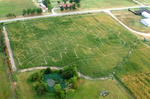 An aerial photograph of the Bloomfield Corn Maze on Friday reveals some of its sponsors' names. The 10-acre corn maze is scheduled to open to the public on Sept. 16 and remain open through Nov. 6. A pumpkin patch, tractor rides and hay rides are also planned.