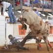 071211 PBR Bull Riders