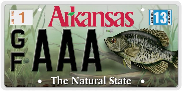 Agfc releases new fish themed license plate for Fish and game licence