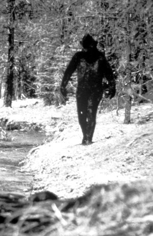 This grainy 1971 photo allegedly shows the legendary Smokey Joe strolling along the Buffalo River at Boy Scout Camp Orr near Jasper.