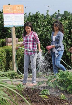 Gardening Teaches Children Nwadg