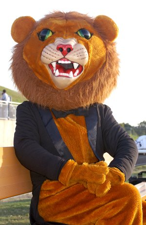 Leo the Lion, Gravette's mascot played by Sayer Smith, was dressed for the occasion at last fall's homecoming celebration in Gravette. Smith's experience as Leo the Lion opened up an opportunity for him to work as Strike, mascot for the Arkansas Naturals.