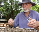 Arkansas Archaeological Summer Dig
