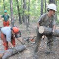 Carissa Hanson and Colin Gordan move the fallen pine from the trail.