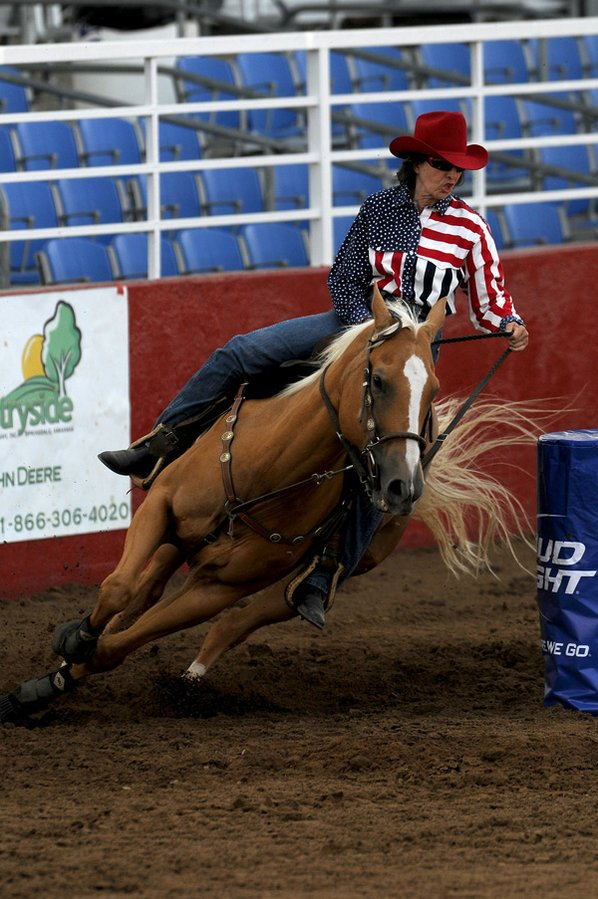 Black quarter horses barrel racing - photo#3