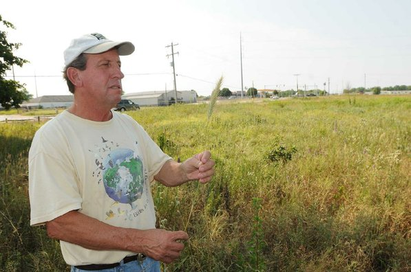 Woolbright  examines a stem of Virginia rye at Searles Prairie. Development can be seen all around the prairie.