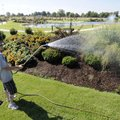 ark Jeffery with the Bentonville Parks and Recreation Department waters the greenery in the flower b...