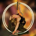 Showboat Branson Belle headliner Janice Martin is the world's only violin-playing aerialist — and sh...