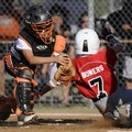 Jason Scott, the Sarasota, Fla., catcher, tags Springdale's Alexander Bowers at the plate Friday dur...