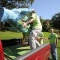 Nick Moore lifts a painted pig off its base Friday with the help of others as Paul Johnson, right, ...