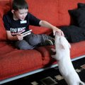 Neo Patrick, 9, reaches out to his therapy pig Coconut Wednesday at their home in Rogers.