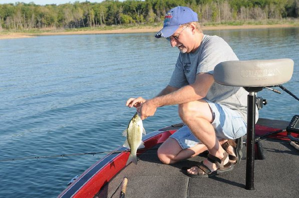 Beaver Lake and its tributaries are the only waters in Arkansas where there is no daily limit on white bass.