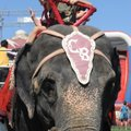 Devin Johnson,