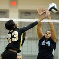 Ariel Hornsby, left, a Bentonville junior, spikes the ball against Springdale Har-Ber senior Tayleah...