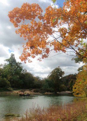 Trees were bright with fall color during a two-day float trip Sunday and Monday on the Kings River.