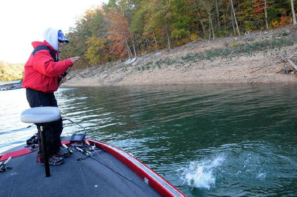 Keith Brashers of Rogers battles a bass that bit a spinner bait at Beaver Lake on Friday Oct. 19. Brashers owns War Eagle Custom Lures in Rogers and put his company's spinner baits to the test at Beaver.