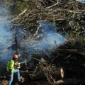 Bill Severson with APAC uses a leaf blower to help set a brush pile on fire Wednesday as the company...