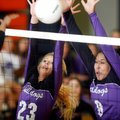 Cassidy Ginger, left, Fayetteville junior, and Mikayla Avery, senior, attempt to block a Bentonville...