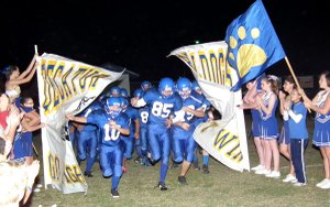 The Bulldogs took the field for Friday's game against the Magazine Rattlers. Decatur won the game 22-7.