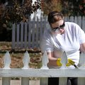 Kimberly Clarkson takes advantage of the nice weather Thursday to apply white stain on her front yar...