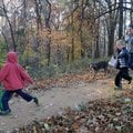 Zane LeMaster, 5, from left, Ben LeMaster, 6, and Eve LeMaster walk their dog Archie on Wednesday al...