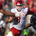 Arkansas Democrat-Gazette/STEPHEN B. THORNTON -- Arkansas QB Tyler Wilson eludes South Carolina defe...