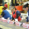 Workers at the Hanna's Candles factory in Fayetteville last week prepare containers of potpourri to ...