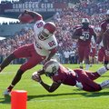 Arkansas receiver Mekale McKay, tripped up just short of the goal line against South Carolina, had t...