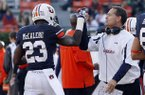 Auburn coach Gene Chizik, right, gives Auburn running back Onterio McCalebb (23) a high-five after he scored a touchdown during the second half of an NCAA college football game against Alabama A&M on Saturday, Nov. 17, 2012 in Auburn, Ala. Auburn defeated Alabama A&M 51-7. (AP Photo/Butch Dill)